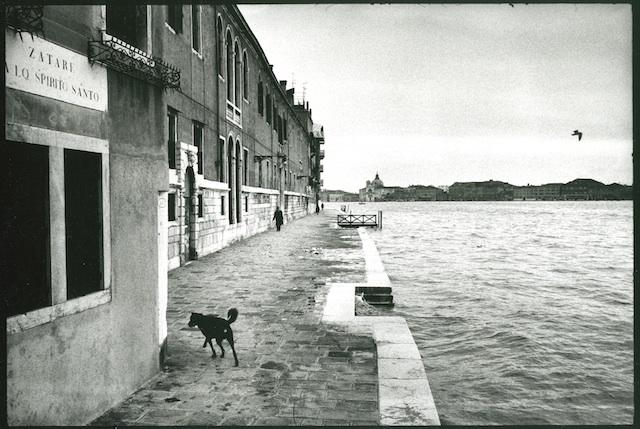 <p><span>Venise</span>, 1979<br>Photographie argentique, 32,4 x 39,3 cm, 2000€ (Edition: 7 exemplaires)</p>