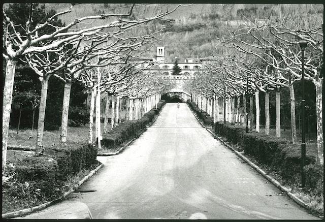 <p><span>Trieste</span>, 1979<br>Photographie argentique, 32,4 x 39,3 cm, 2000€ (Edition: 7 exemplaires)</p>