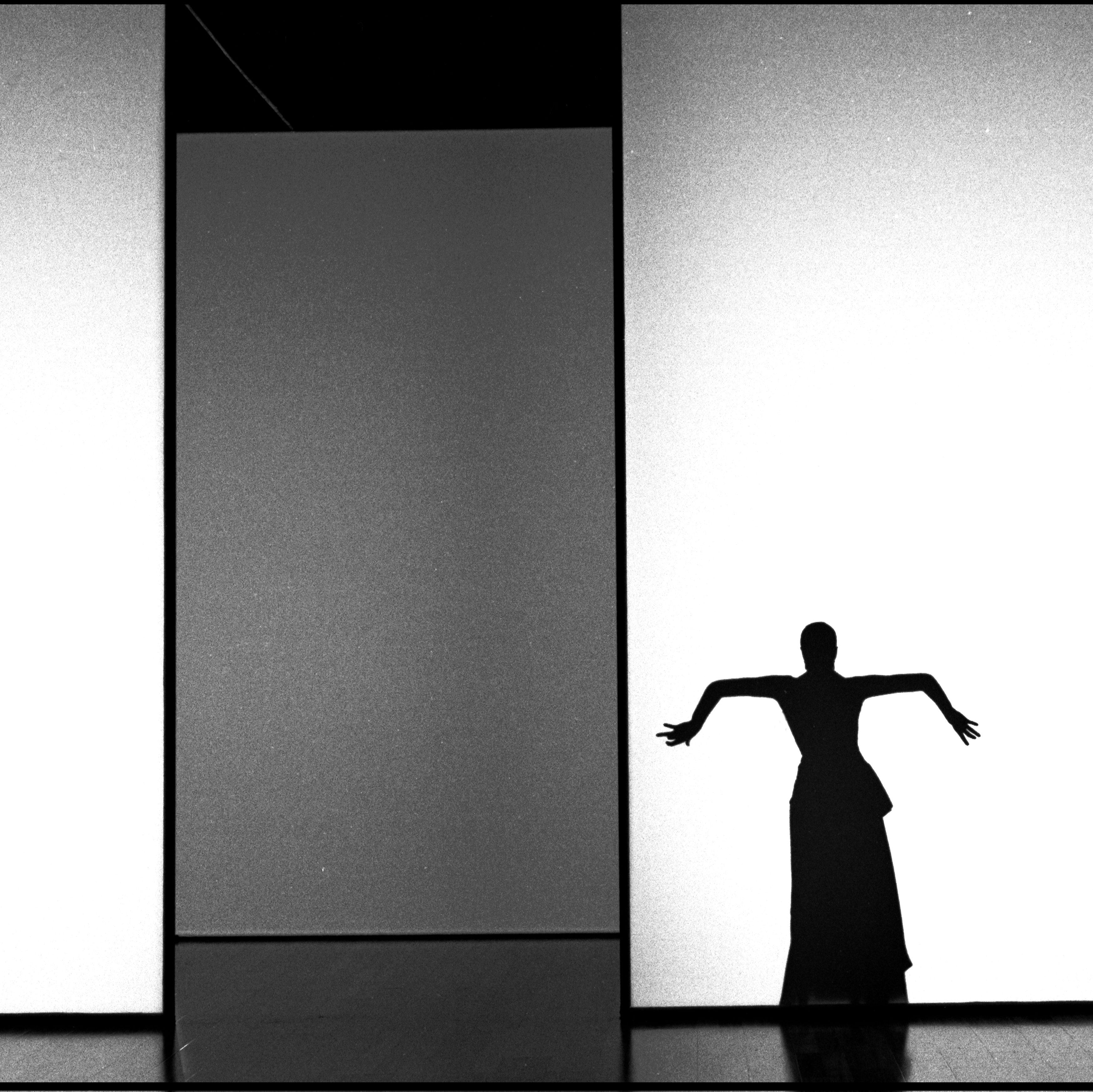 <p><span>Flamenco</span>, 1995<br>75x83</p>