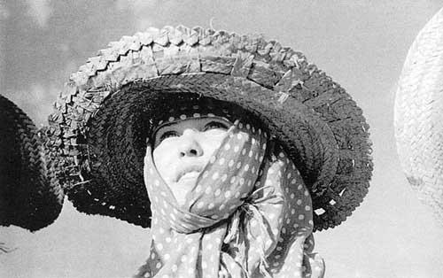 <p><span>Por tierras de Castilla</span>, 1955<br></p>